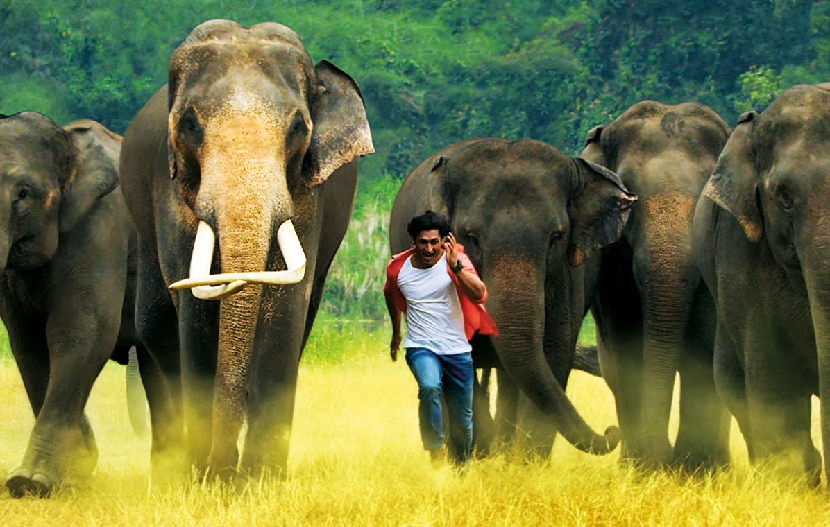 """""""Junglee""""… A routine Vidyut Jammwal actioner with a wildlife bait!"""